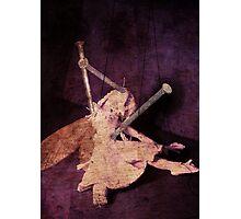 Fairy Bug Photographic Print