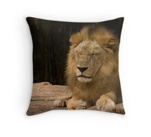 Time for a Royal Nap Throw Pillow
