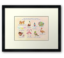 Rare and Unusual Birds of Christmas Framed Print
