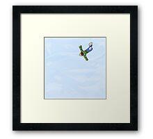 Flying Framed Print