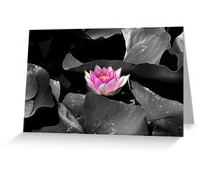 Sweet Lily Greeting Card