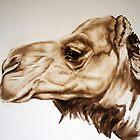 Pyndan Camel by alstrangeways
