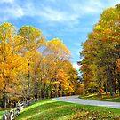 Perfect Autumn Day by Karen Peron