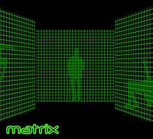 Matrix II by Graeme Hindmarsh Design