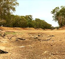 Tha Dry Darling River at Louth by Mark Ingram