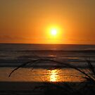 Sunrise Surfers Paradise Beach with fern by Rohana