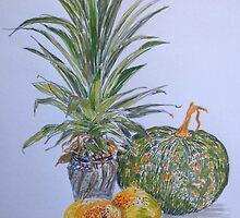 Three Australian Seasons by jaguarart