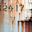 32417 by Amanda Lowjen