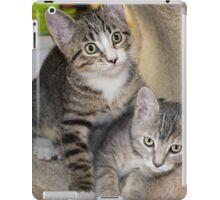 Tabby Kitten Cuties iPad Case/Skin