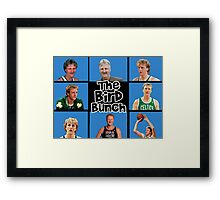 the bird bunch Framed Print