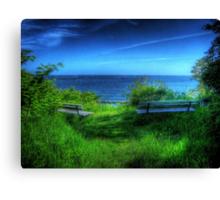 A Blue View Canvas Print