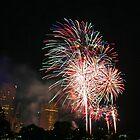 Fireworks by YC Lo