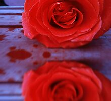 Red Rose on Wooden Background by AnnArtshock