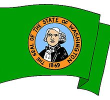 Washington State Flag by kwg2200
