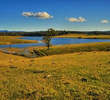 Richmond Vale 2 by Mark Snelson