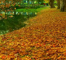 Autumn Leaves by sale