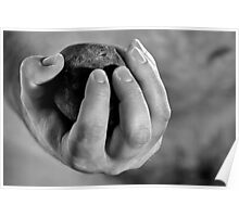 Hand & Stone. Poster