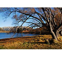 Lakeside in the Cantebury Hills Photographic Print