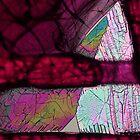 Ninhydrin crystals under polarised light by Michael Dingley