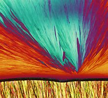 Tris crystals under polarised light by Michael Dingley