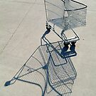 Shopping Trolly,Grovedale Geelong by Joe Mortelliti