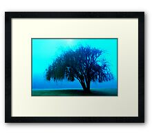 Willow tree blue Framed Print