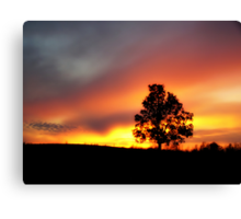 Sunset in da country Canvas Print