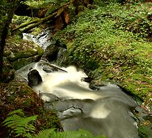 Rushing Waters,Triplet Falls,Otway's by Joe Mortelliti