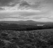 View from above by Craxford