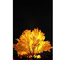 Glowing Reviews Photographic Print