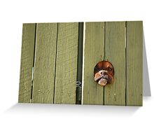 """""""Don't Make Me Come Out There!"""" Greeting Card"""
