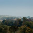 Duffy Hill in October by TrendleEllwood