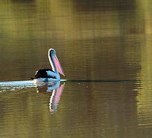 Drifting Along, Diamantina River,Qld by Joe Mortelliti