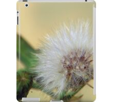 ©NS For The Promise Land IIA. iPad Case/Skin