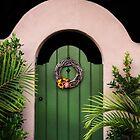 ♫ GREEN DOOR ♫ by heatherfriedman