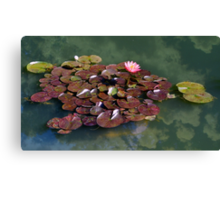 My thoughts, a reflection Canvas Print