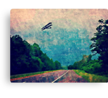 The world from above the canopy Canvas Print