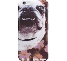 Sassy, Smarter Pug  iPhone Case/Skin