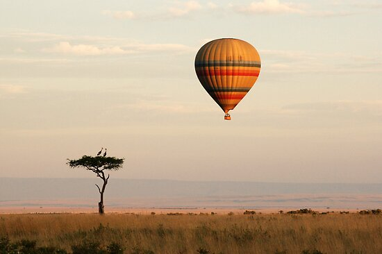 Dawn flight over the Masai Mara by Sharon Bishop