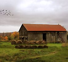 Hay Bales Near a Country Barn by SummerJade
