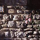 stonewall roses by estepan99