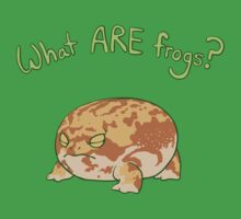 What ARE Frogs? (Desert Rain edition) by BigOrangeStar