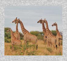 Giraffe Humor - African Wildlife - Amazing Stare Kids Clothes