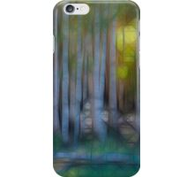 Donuts Abstract 24 iPhone Case/Skin