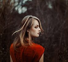 red dress of autumn by LauraZalenga
