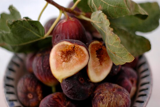 Figs In A Bowl by Antaratma Images