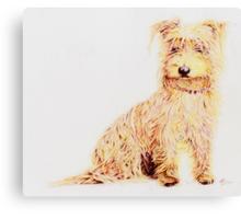 Daisy Canvas Print