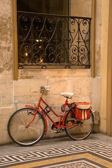 Parisan Bicycle by Craig Goldsmith