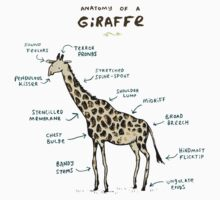 Anatomy of a Giraffe Kids Clothes