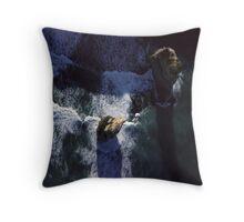 limestone coast Throw Pillow
